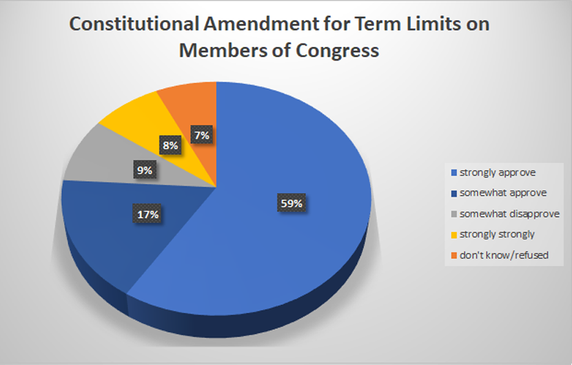 New Hampshire Votes Overwhelming Support Term Limits on Congress