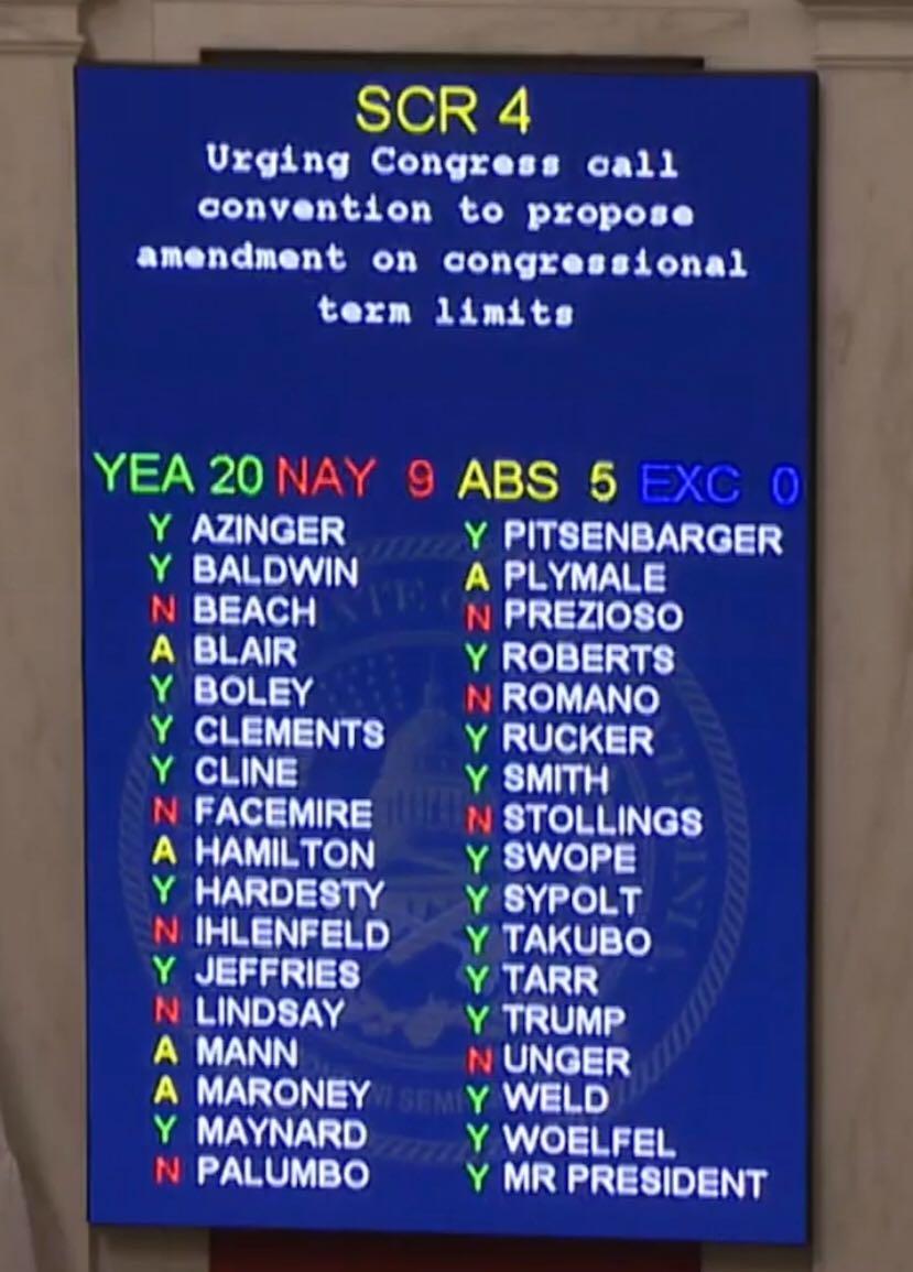 WV Senate 2020 vote on term limits for Congress